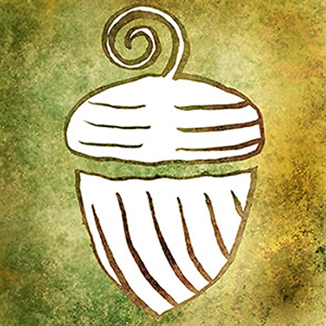 First Night App Icon Of Acorn