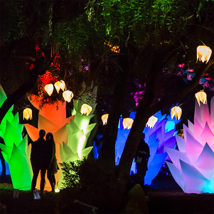 Artsplosure Announces Astro Botanicals Garden Of Light For WRAL First Night Raleigh 2020